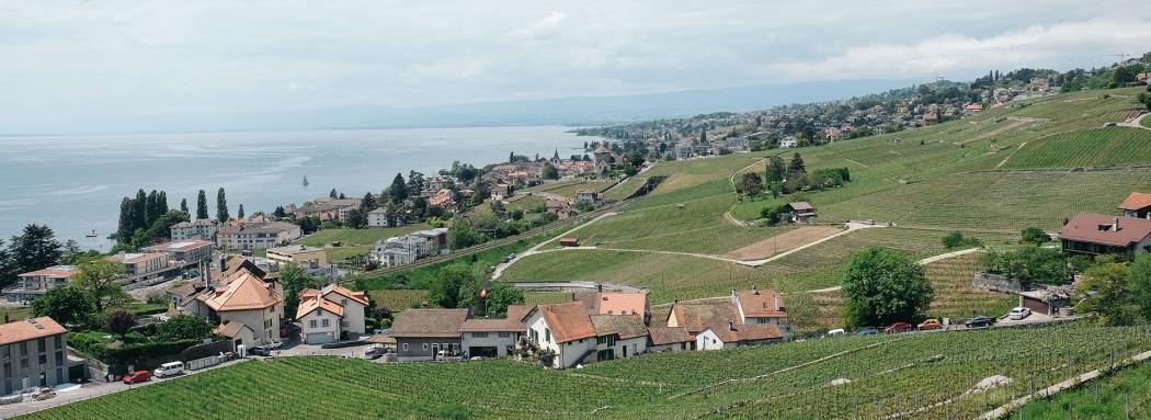 Lavaux: Vignoble en terrasses