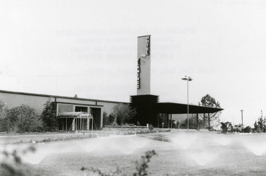 original flamingo hotel
