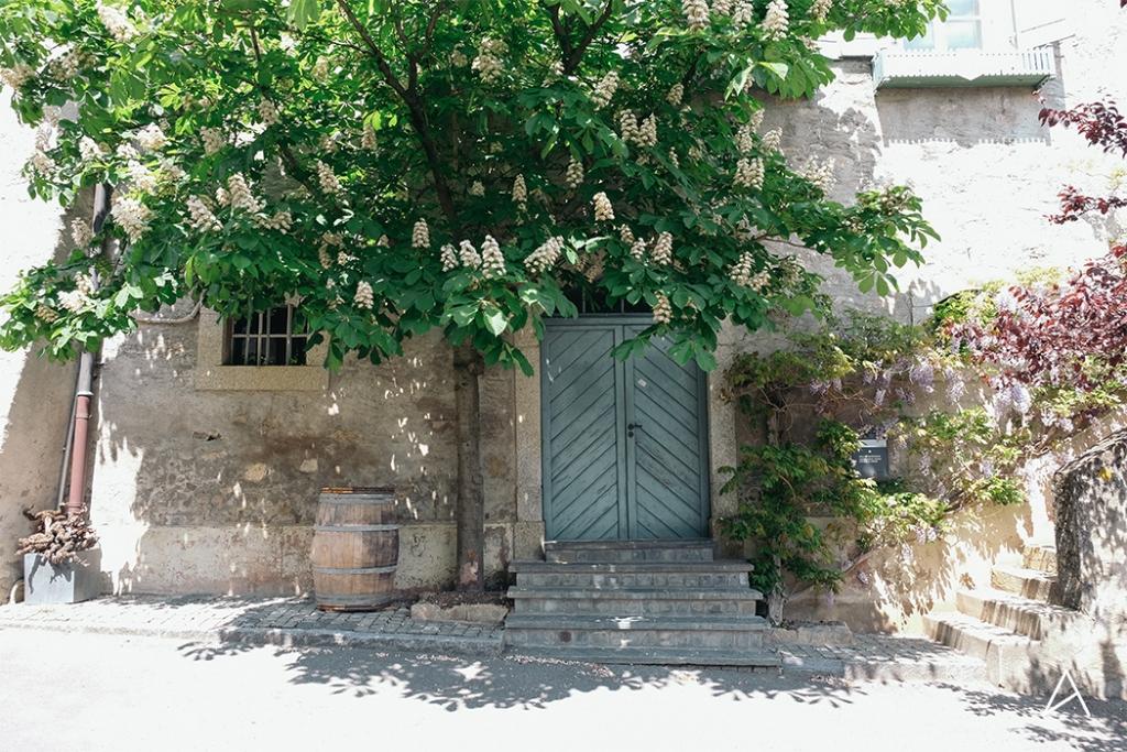 Lavaux_Randonnee_30