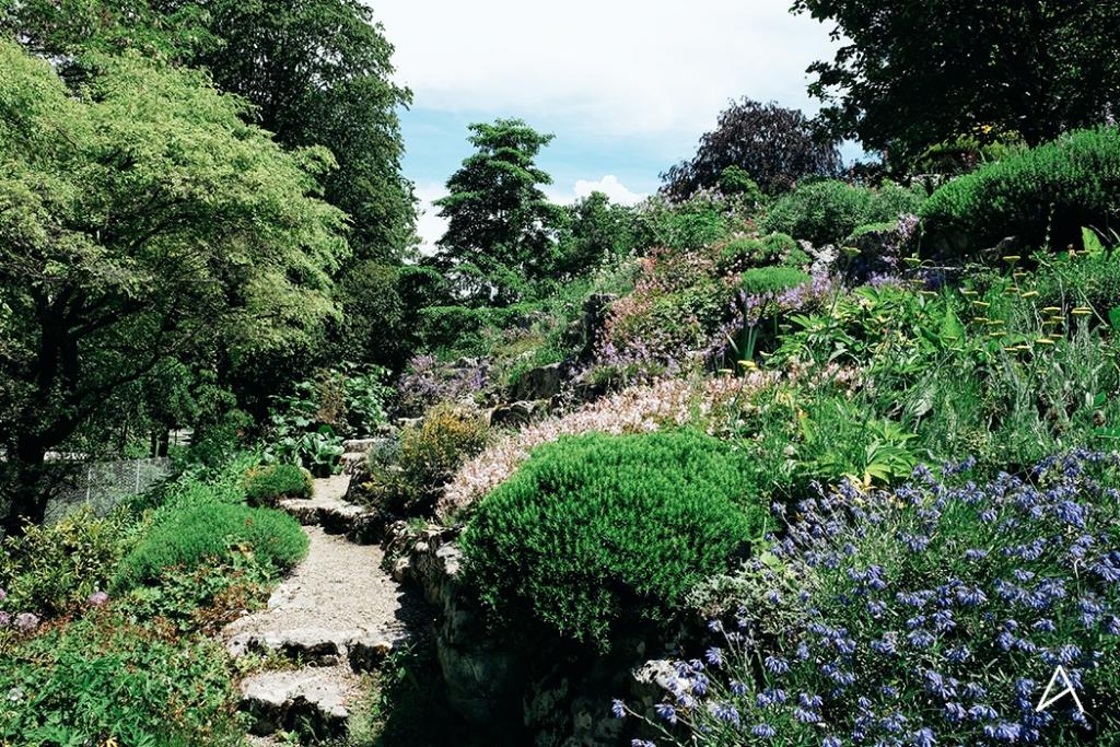 Jardin_botanique_Lausanne_14