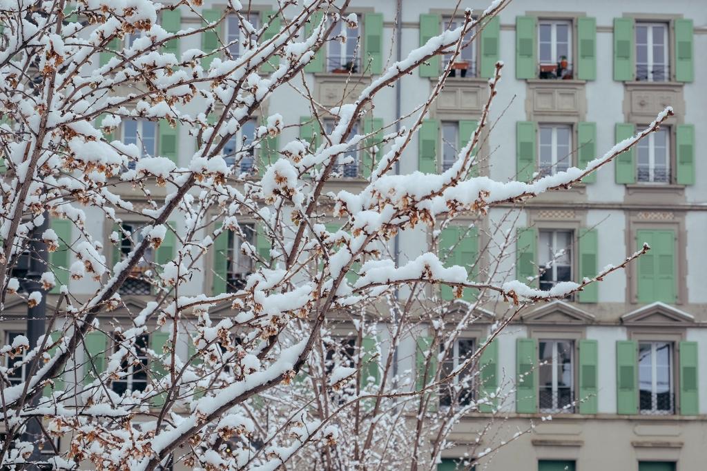 Lausanne_Hiver_Neige_33
