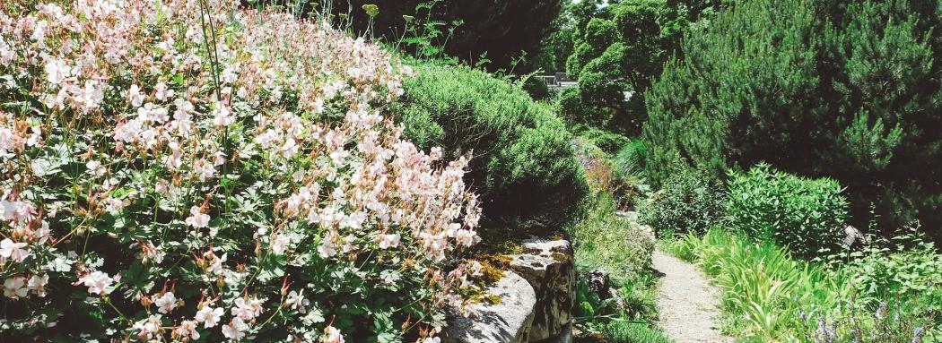 Le Jardin Botanique de Lausanne