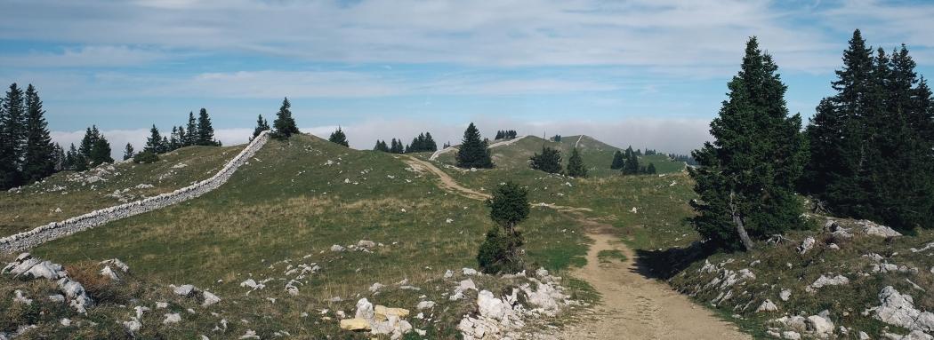 Du Mollendruz au Marchairuz en passant par le Mont Tendre