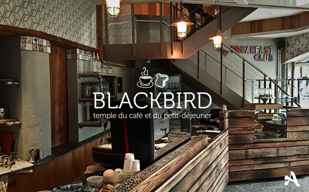 blackbird_lausanne_slider