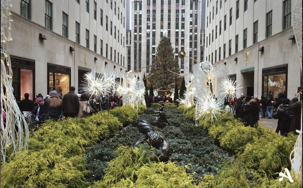 new_york__rockefeller_noel