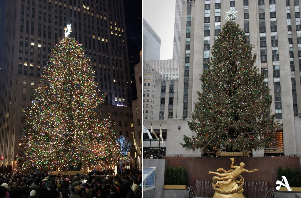 new_york__rockefeller_noel_2