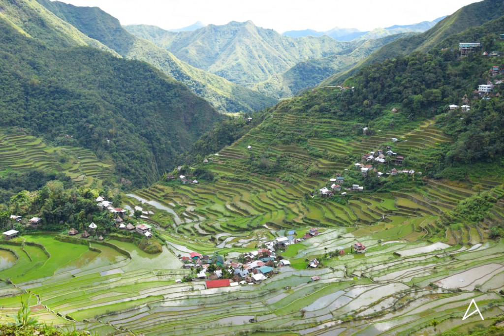 Articles_2_Batad_10