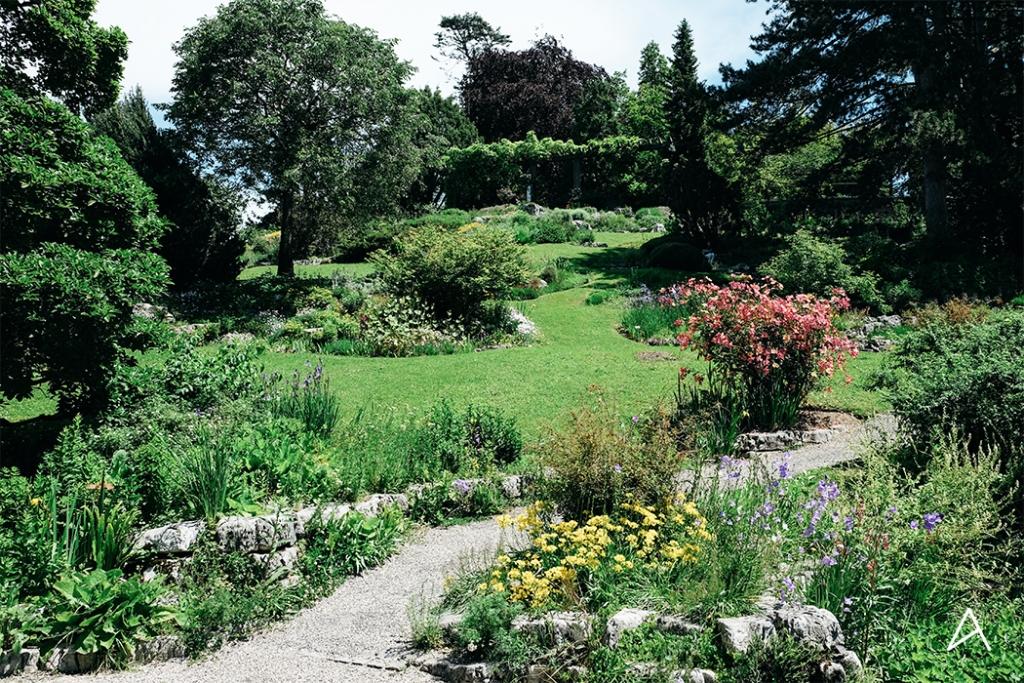 Jardin_botanique_Lausanne_18