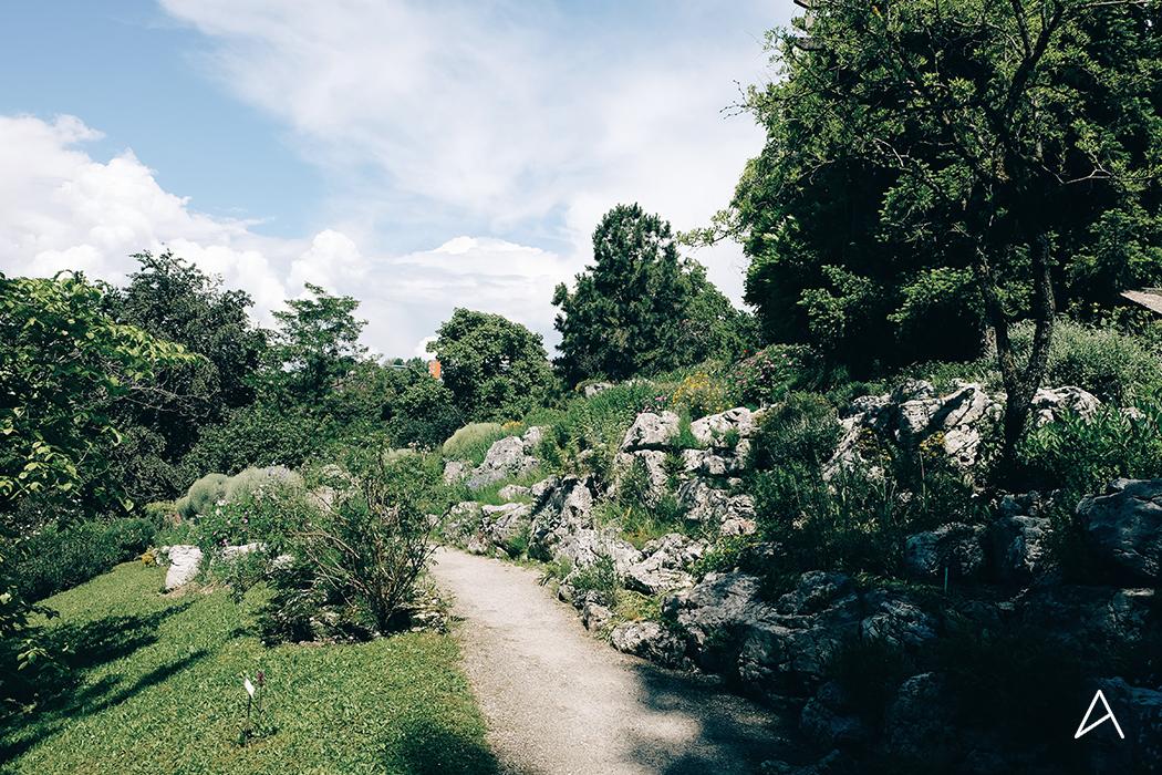 Jardin_botanique_Lausanne_2
