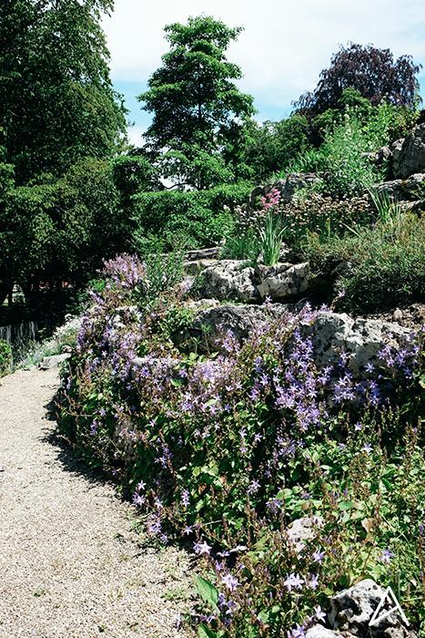 Jardin_botanique_Lausanne_vertical_2