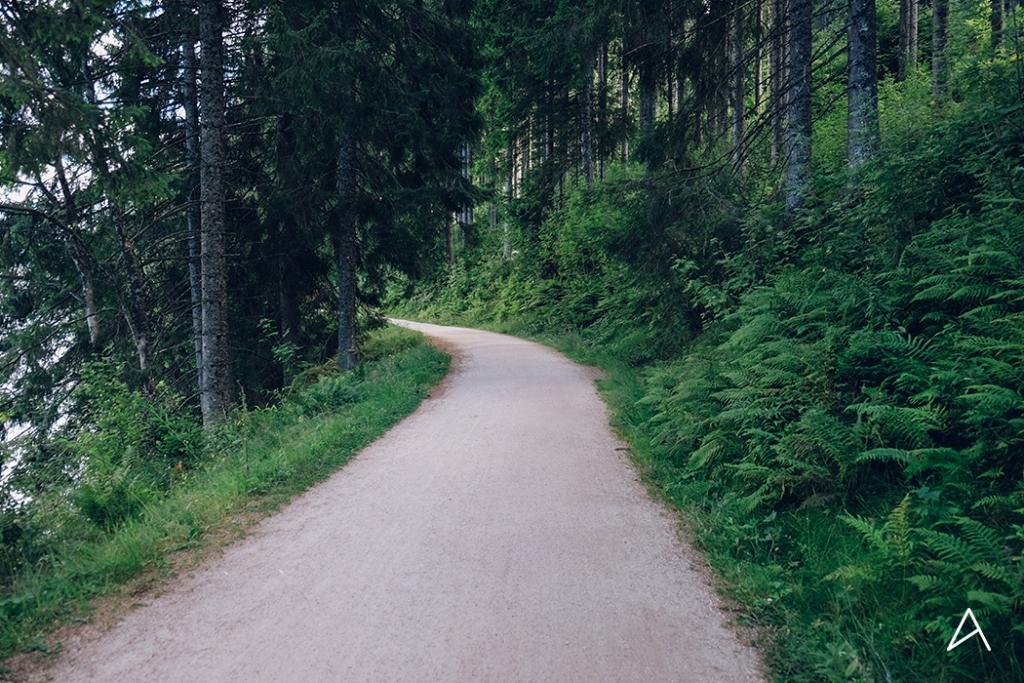 Freiburg_Im_Breisgau_Schluchsee_12