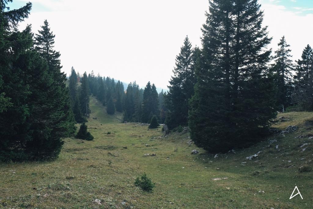 Mollendruz_Marchairuz_Mont_Tendre_17