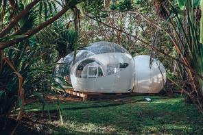 Bubble Lodge Île Maurice: dormir dans les plantations de thé