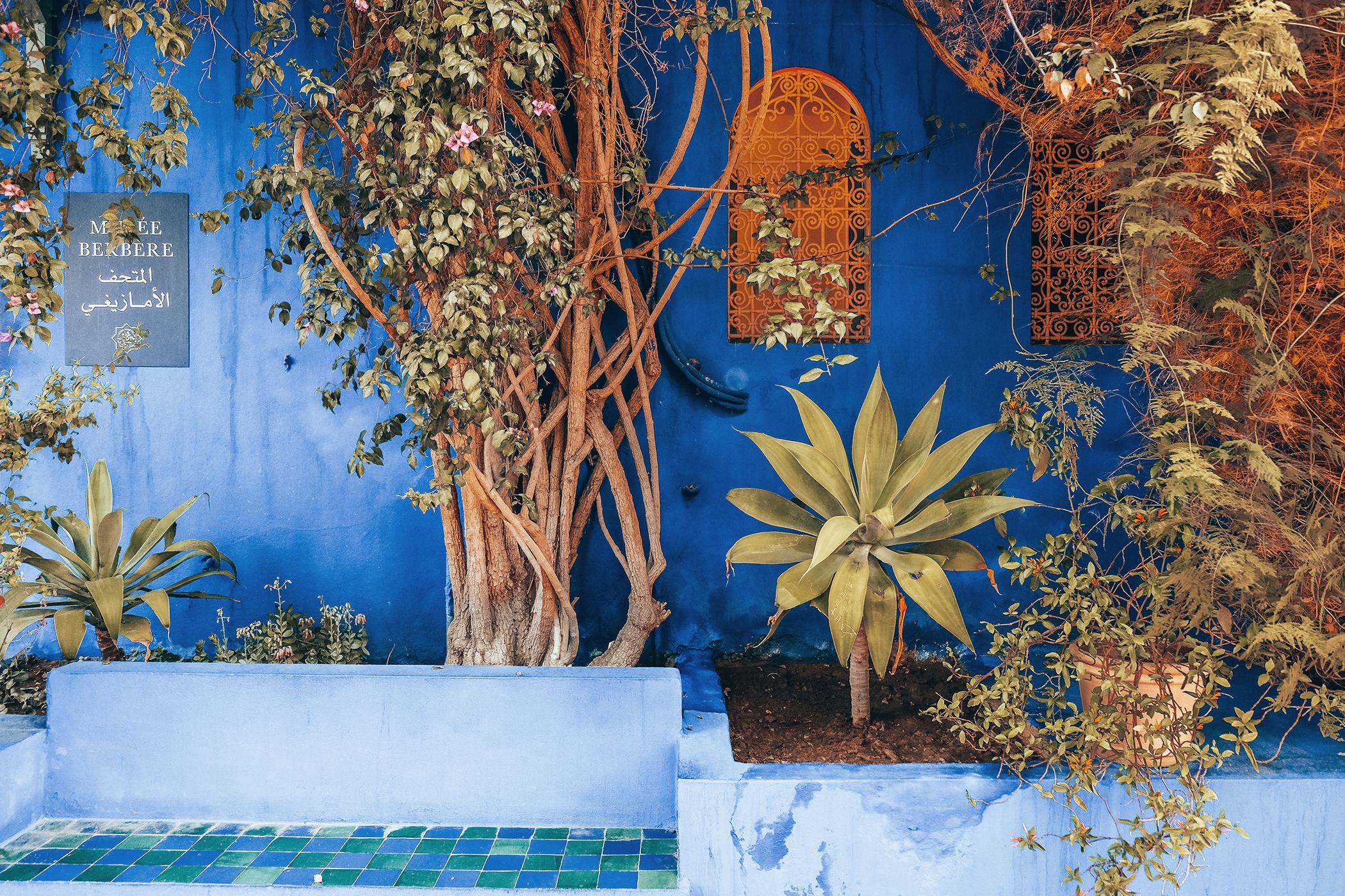 Le Jardin Majorelle L Incontournable De Marrakech