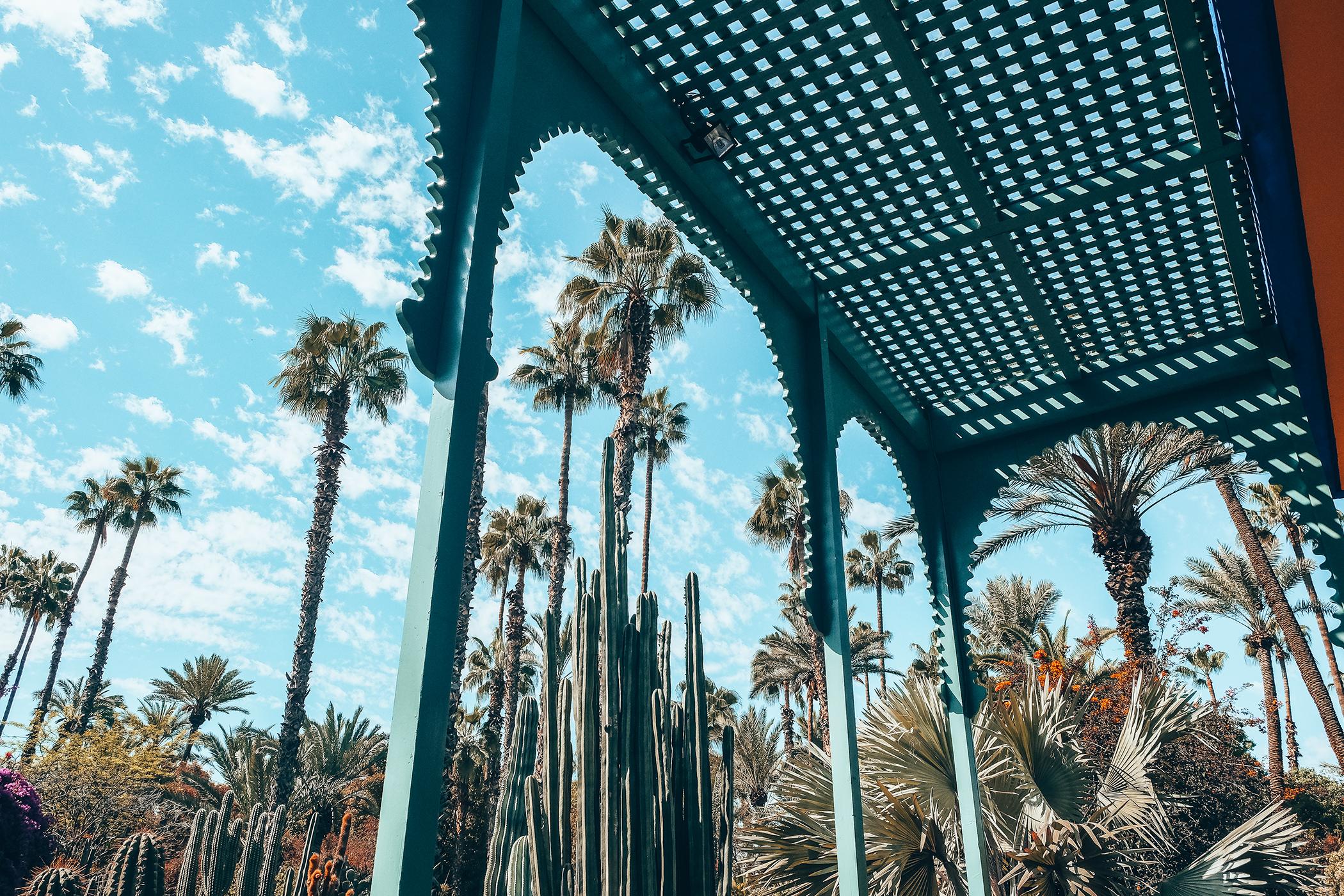 Le jardin majorelle l 39 incontournable de marrakech for Jardin yves saint laurent marrakech