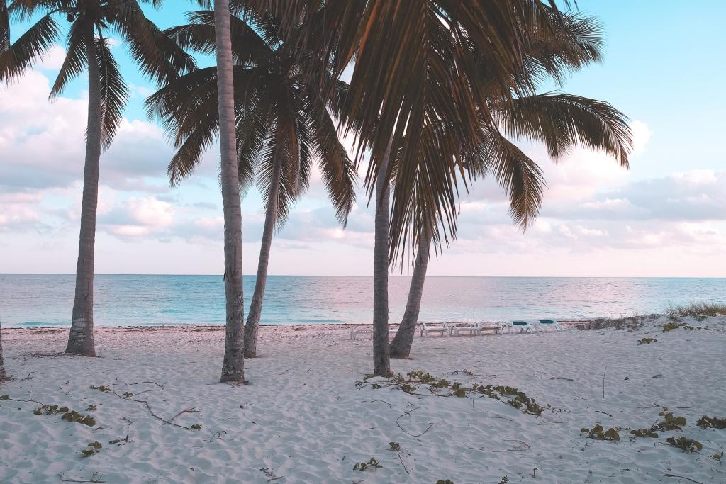Cayo Levisa Palmiers Coucher Soleil