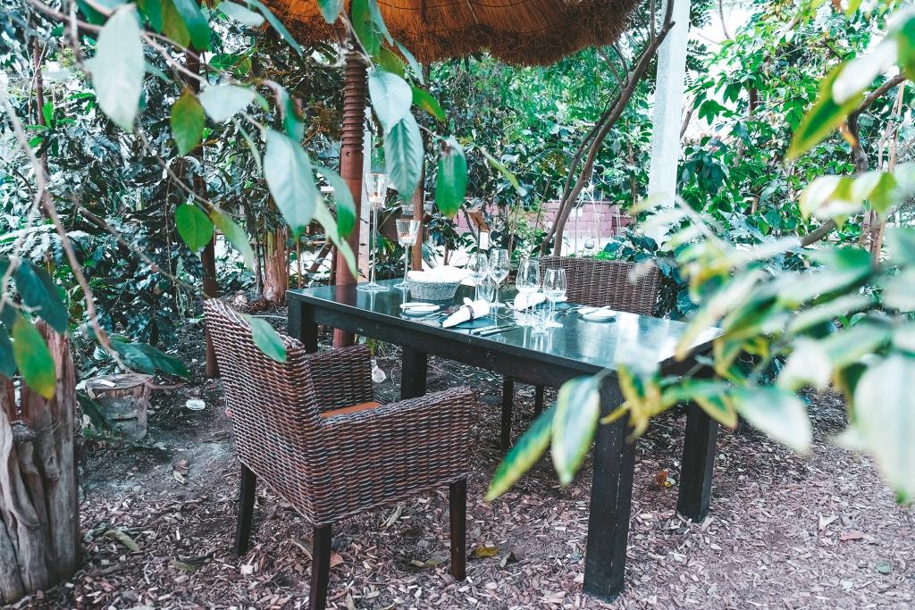 Une jolie table au milieu de la jungle de la Tropenhaus