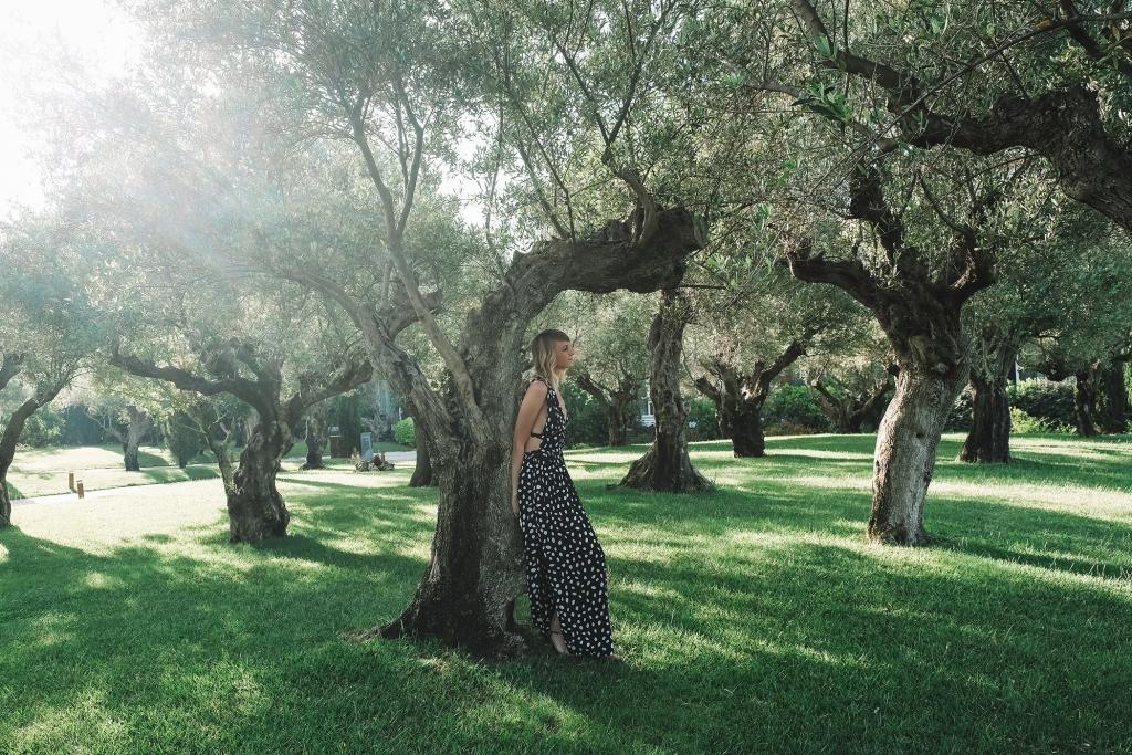 Des oliviers centenaires permettent de s'abriter du soleil.
