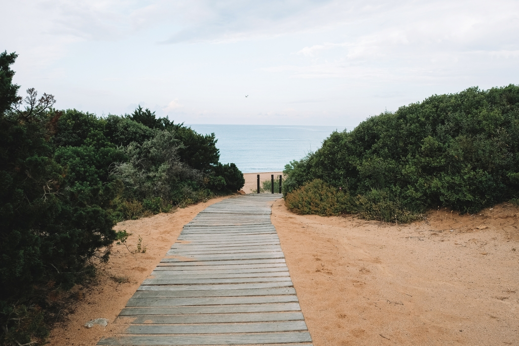 Un petit chemin menant à la plage de Costa Navarino