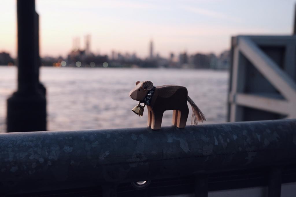 Voyage aux Etats-Unis, vue sur la skyline de New York