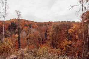Promenades d'automne dans le canton de Vaud