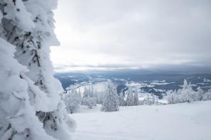 Balade hivernale en raquettes ou à pied dans la canton de Vaud